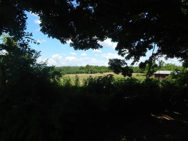 Reed Rd, Greeneville, TN 37745 (#1157914) :: Catrina Foster Group