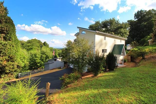 5240 Oakhill Drive, Knoxville, TN 37912 (#1159342) :: Cindy Kraus Group | Realty Executives Associates