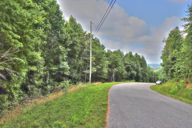 Lot 159 Whistle Valley Rd, New Tazewell, TN 37825 (#1160118) :: JET Real Estate