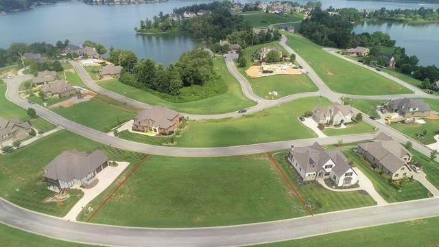 491 Castaway Lane, Lenoir City, TN 37772 (#1161745) :: Billy Houston Group