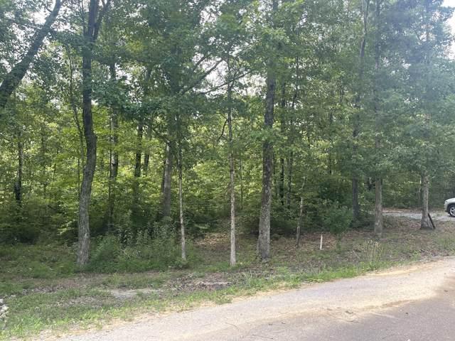 393 Timber Ridge Rd, Pikeville, TN 37367 (#1162200) :: Realty Executives Associates