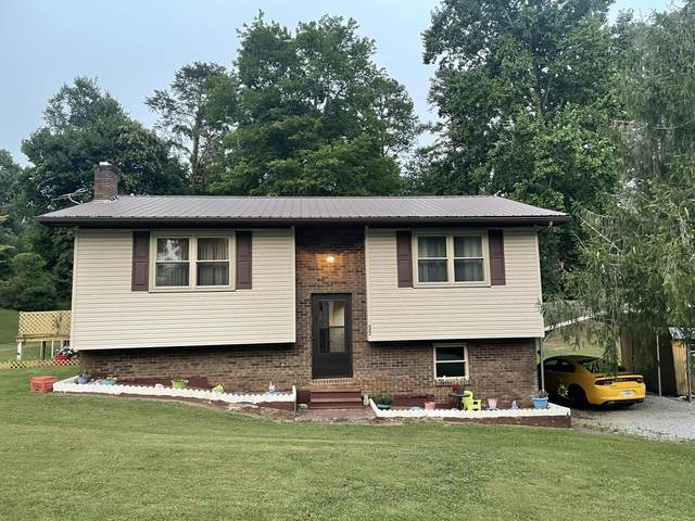 523 Forest Hills Drive, New Tazewell, TN 37825 (#1162274) :: Realty Executives Associates