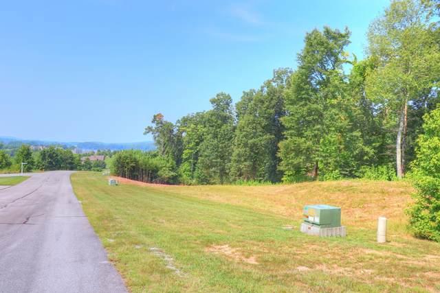 Lot 349 Water View Drive, Rockwood, TN 37854 (#1162331) :: A+ Team