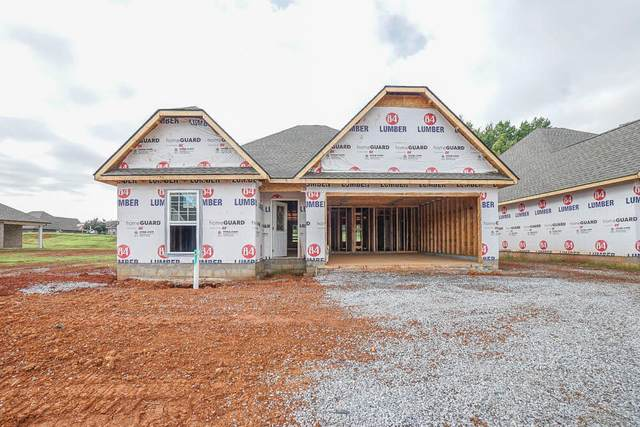 250 Sand Hills Drive, Maryville, TN 37801 (#1163114) :: Shannon Foster Boline Group