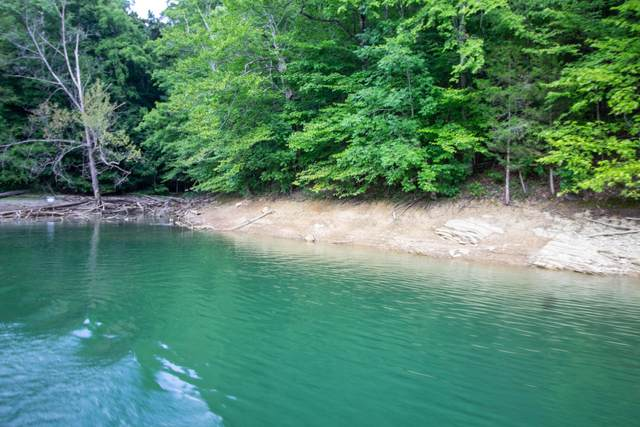 Lot 359 Morning Glory Rd, New Tazewell, TN 37825 (#1164061) :: JET Real Estate