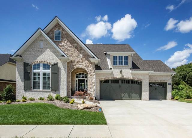 317 Kendall Hunt St, Knoxville, TN 37934 (#1164853) :: A+ Team