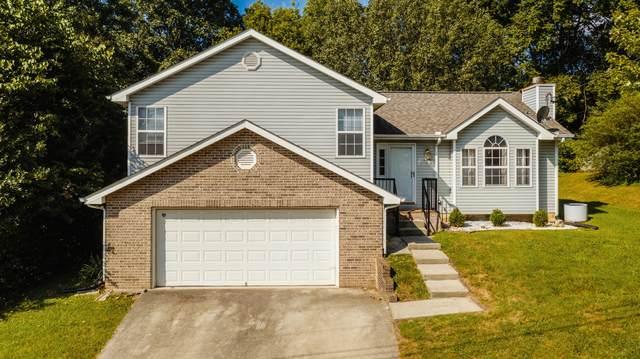 5933 Wilkesboro Lane, Knoxville, TN 37912 (#1165207) :: Catrina Foster Group