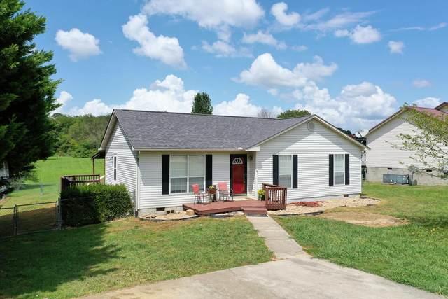 285 Vernie Lee Rd, Friendsville, TN 37737 (#1165604) :: Shannon Foster Boline Group