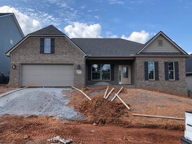 11047 Big Sky Lane, Knoxville, TN 37932 (#1166328) :: Shannon Foster Boline Group