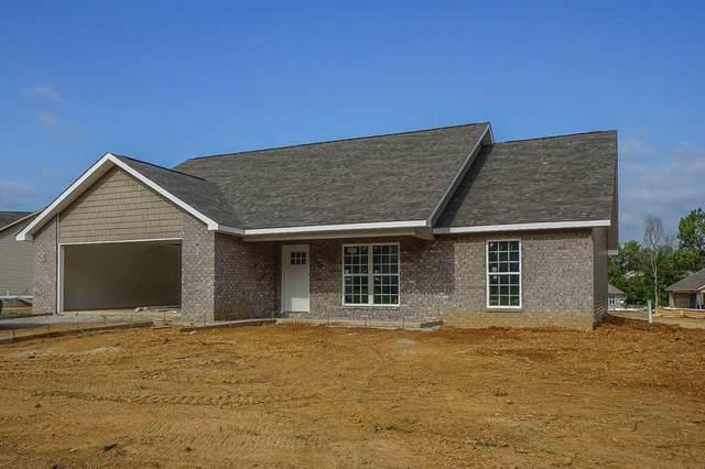 211 Horton Lane, Maryville, TN 37803 (#1166679) :: Realty Executives Associates