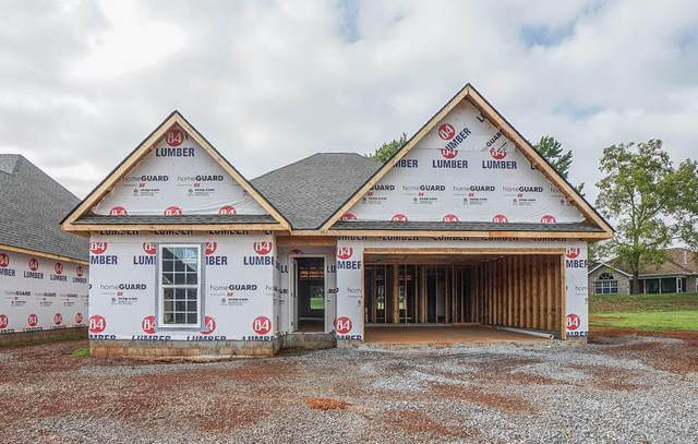 254 Sand Hills Drive, Maryville, TN 37801 (#1166683) :: Shannon Foster Boline Group