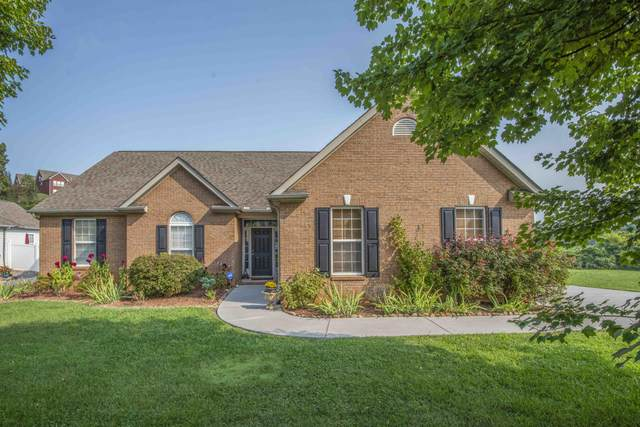 9321 Ivywood Lane, Knoxville, TN 37931 (#1166753) :: Catrina Foster Group