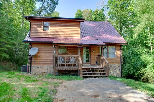 3201 Bear Country Way, Sevierville, TN 37876 (#1166855) :: Realty Executives Associates