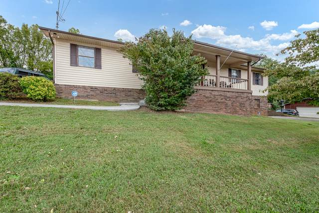 236 White Pine Lane, Rockford, TN 37853 (#1167673) :: The Cook Team