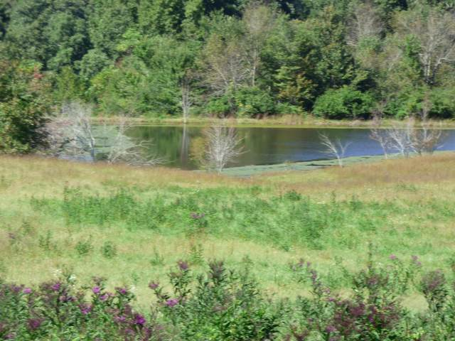 Pigeon Ridge Rd, Crossville, TN 38555 (MLS #1168472) :: Austin Sizemore Team