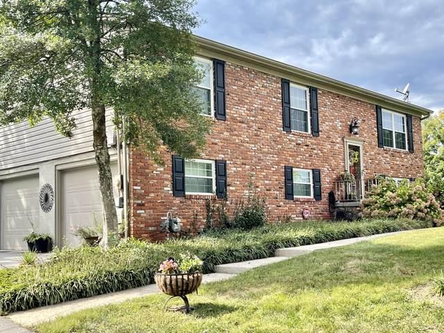 805 Crest Forest Rd, Knoxville, TN 37923 (#1168733) :: Cindy Kraus Group | Engel & Völkers Knoxville