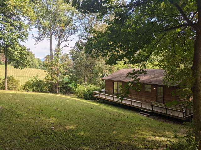 7790 Berry Williams Rd, Townsend, TN 37882 (#1168773) :: JET Real Estate