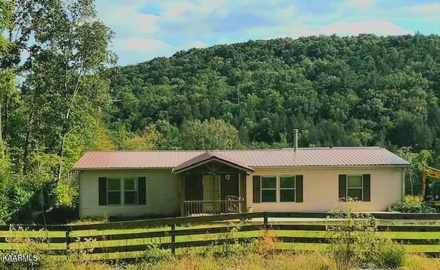 487 Sabo Rd, Grandview, TN 37337 (#1169613) :: Tennessee Elite Realty