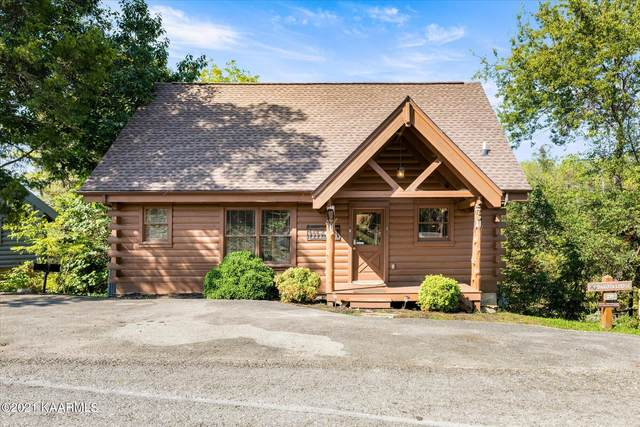 234 Alpine Mountain Way, Pigeon Forge, TN 37863 (#1169846) :: Collins Family Homes | Keller Williams Smoky Mountains