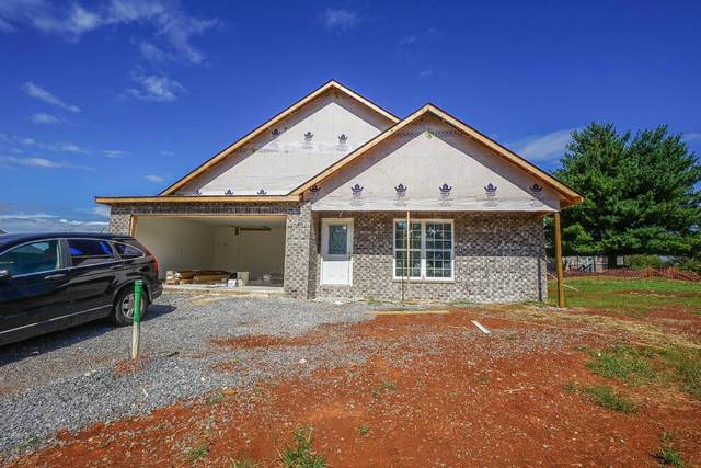 163 Sand Hills Drive, Maryville, TN 37801 (#1169915) :: The Cook Team
