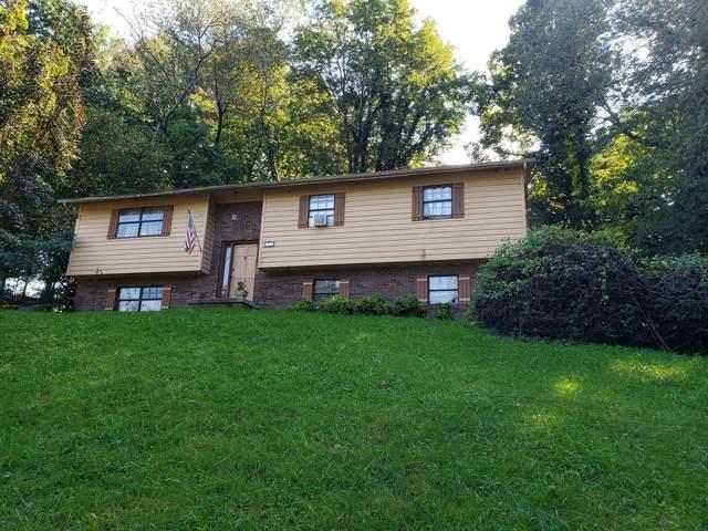 321 Oran Rd, Knoxville, TN 37934 (#1170187) :: Realty Executives Associates
