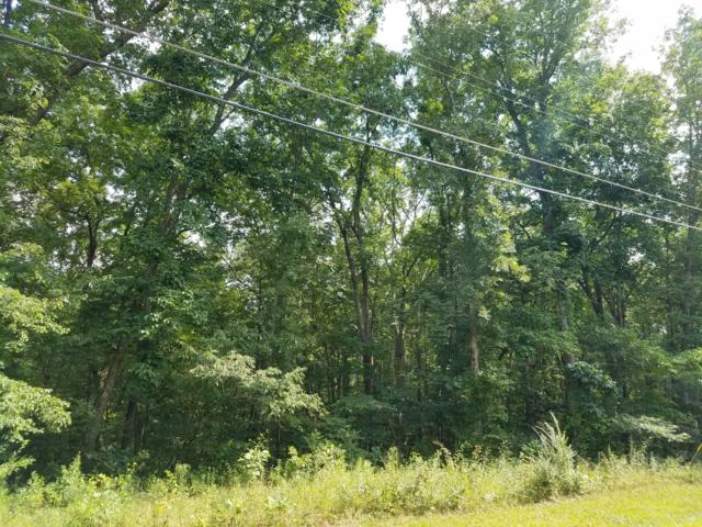 Tennessee Ave, Crossville, TN 38555 (#671386) :: Billy Houston Group