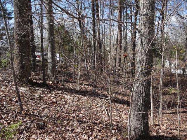 Riverview Rd, Maynardville, TN 37807 (#882591) :: Billy Houston Group