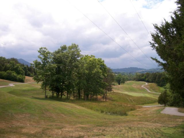 Lot 60 - Woodlake Blvd, Tazewell, TN 37879 (#894369) :: Billy Houston Group
