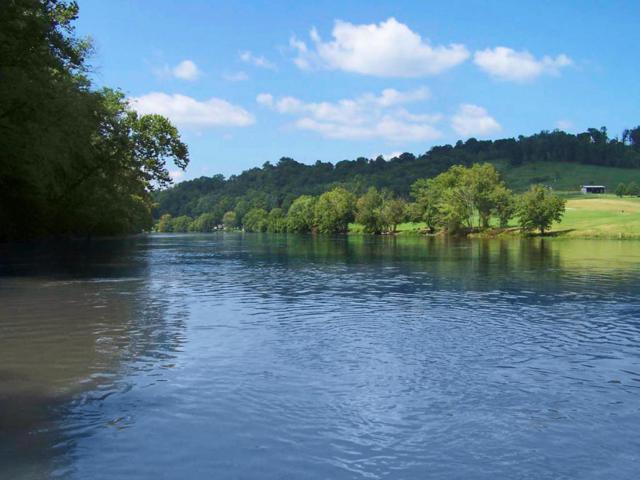 River Stone Drive, Blaine, TN 37709 (#902496) :: Billy Houston Group