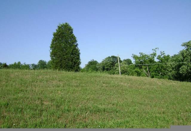 Lot 1 Scenic Shores Dr., Dandridge, TN 37725 (#911890) :: Tennessee Elite Realty