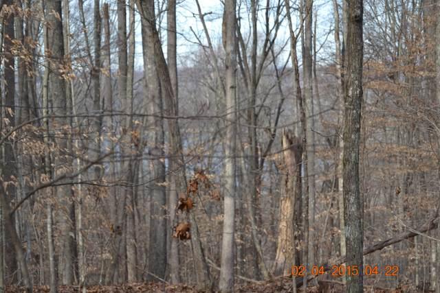 Songbird Lane, Maynardville, TN 37807 (#913543) :: Tennessee Elite Realty