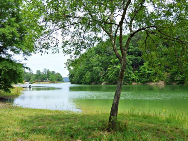 Lot 7 Waterstone Drive, Dandridge, TN 37725 (#915975) :: Shannon Foster Boline Group