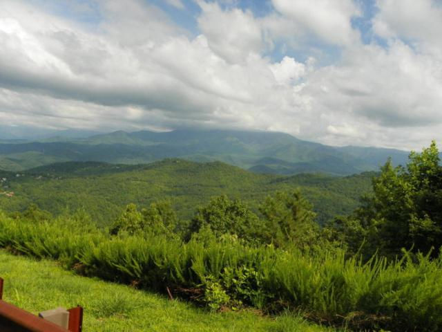 Enclave Park Way, Sevierville, TN 37876 (#917809) :: Shannon Foster Boline Group