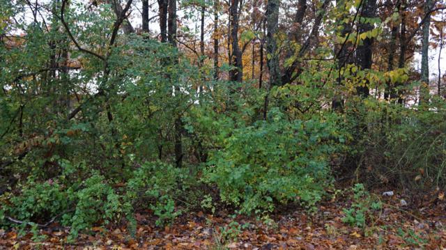 Mockingbird Dr., Crossville, TN 38555 (#922101) :: CENTURY 21 Legacy