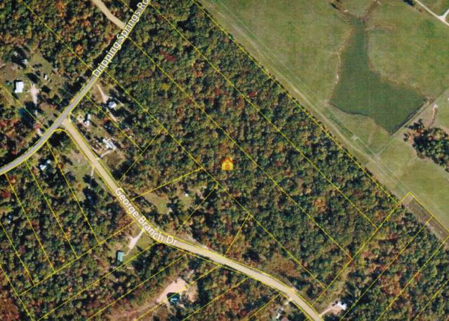 Dripping Springs Rd, Monterey, TN 38574 (#928849) :: Shannon Foster Boline Group