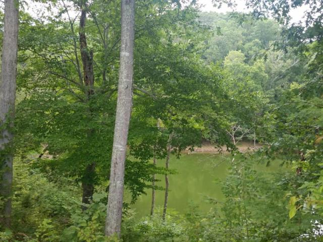 Lot 205 Harbor Point, Mooresburg, TN 37811 (#936111) :: Shannon Foster Boline Group
