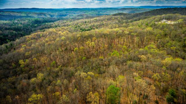 Green Ridge Trail - Lot #22, Harriman, TN 37748 (#941825) :: Venture Real Estate Services, Inc.