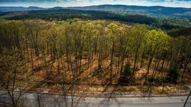 Green Ridge Trail - Lot #40, Harriman, TN 37748 (#941829) :: Venture Real Estate Services, Inc.