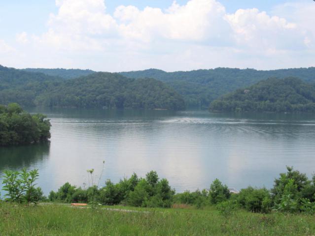 Hickory Pointe Lane, Maynardville, TN 37807 (#942235) :: Billy Houston Group