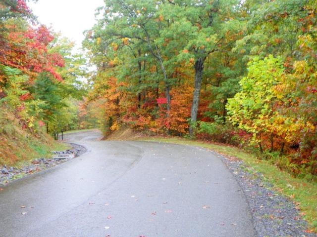 Lot 19, Laurel Top Way, Gatlinburg, TN 37738 (#942309) :: Tennessee Elite Realty