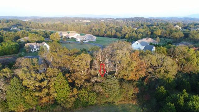 147 Sikwa Trail, Vonore, TN 37885 (#945810) :: Billy Houston Group