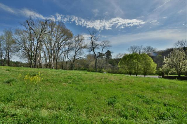 1716 S Northshore Drive, Knoxville, TN 37922 (#952569) :: Billy Houston Group