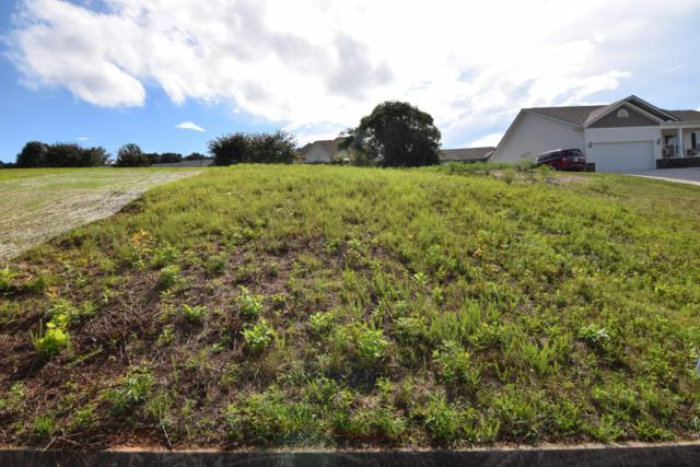 Lot 80 Mountain Vista Rd, Knoxville, TN 37931 (#969826) :: Billy Houston Group