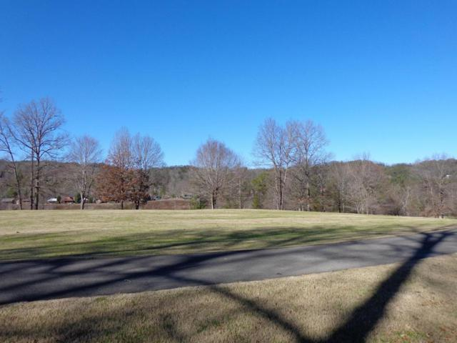 Lakeview Tr, Townsend, TN 37882 (#972793) :: Billy Houston Group
