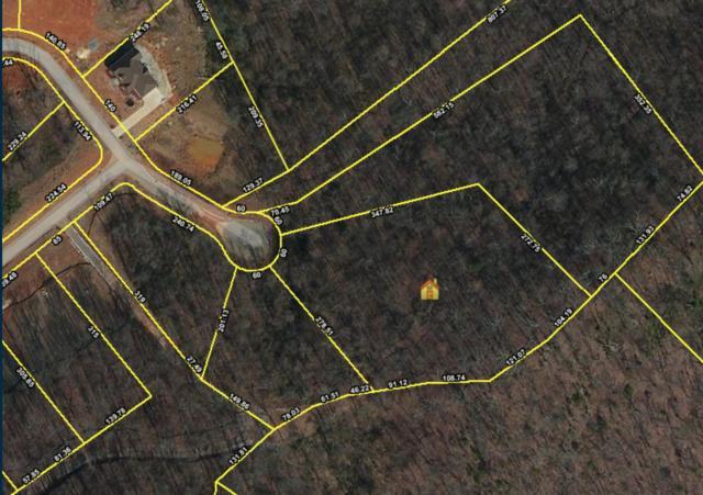 4300 Falcon Ridge Way, Knoxville, TN 37921 (#975076) :: Billy Houston Group