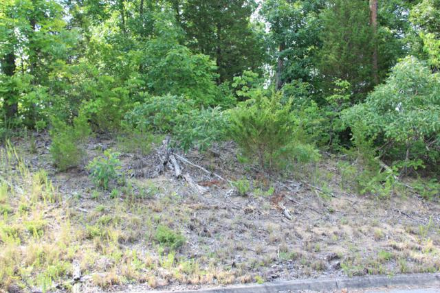 Lot 2 Harbor Point Dr, Sevierville, TN 37876 (#975759) :: Shannon Foster Boline Group