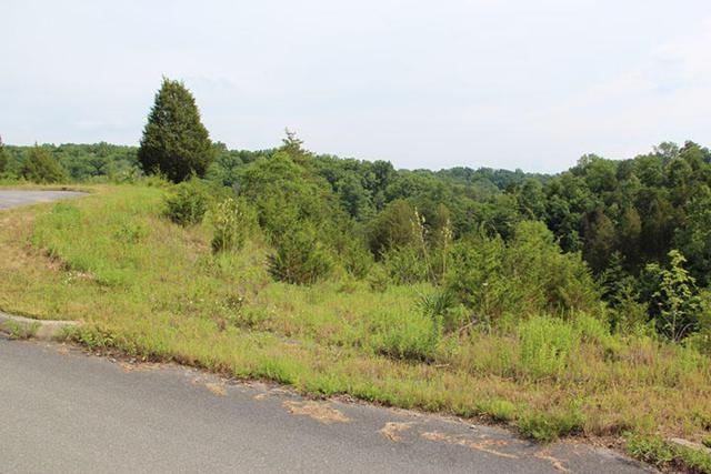 Lot 12 Harbor Point Dr, Sevierville, TN 37876 (#976070) :: Shannon Foster Boline Group