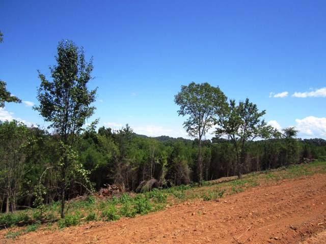 Lot 22- Mountain Vista Trail Rd, Dandridge, TN 37725 (#976071) :: Shannon Foster Boline Group