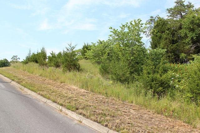 Lot 16 Harbor Point Dr, Sevierville, TN 37876 (#976075) :: Shannon Foster Boline Group