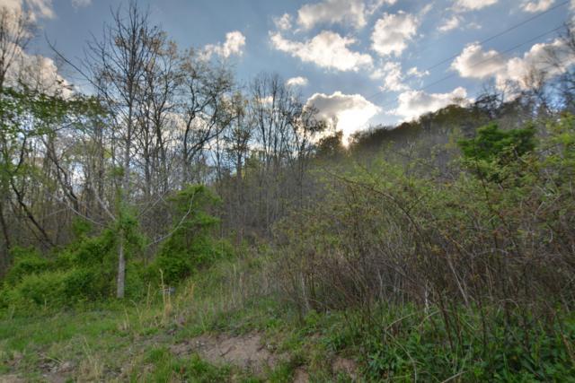 L-9 Wolf Peak Lane, Heiskell, TN 37754 (#976659) :: Shannon Foster Boline Group